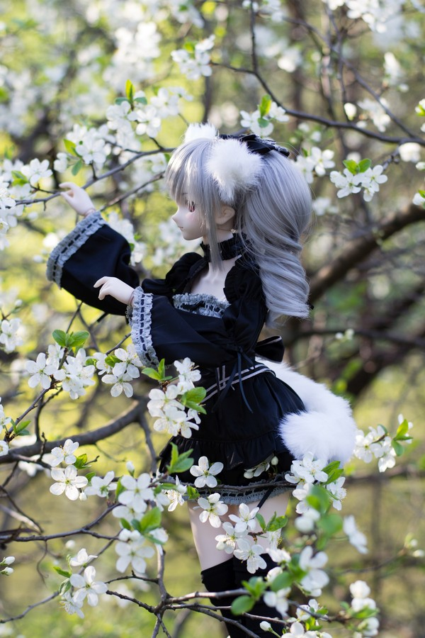 DollfieDream - ностальгии пост DollfieDream, Кукла, хобби, фотография, аниме, saber alter, Hatsune Miku, Kanzaki Ranko, длиннопост