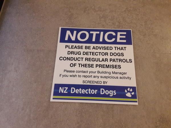 Пост про Новую Зеландию 2 новая зеландия, оклэнд, жизнь заграницей, жизнь, длиннопост