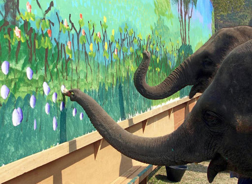 Даже слон рисует лучше тебя. слоны, Живопись, длиннопост
