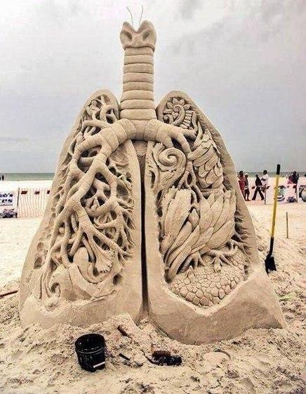 Песочные лёгкие