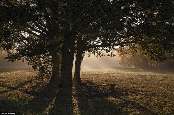 Выставка английских пейзажей. Пейзаж, выставка, Англия, длиннопост