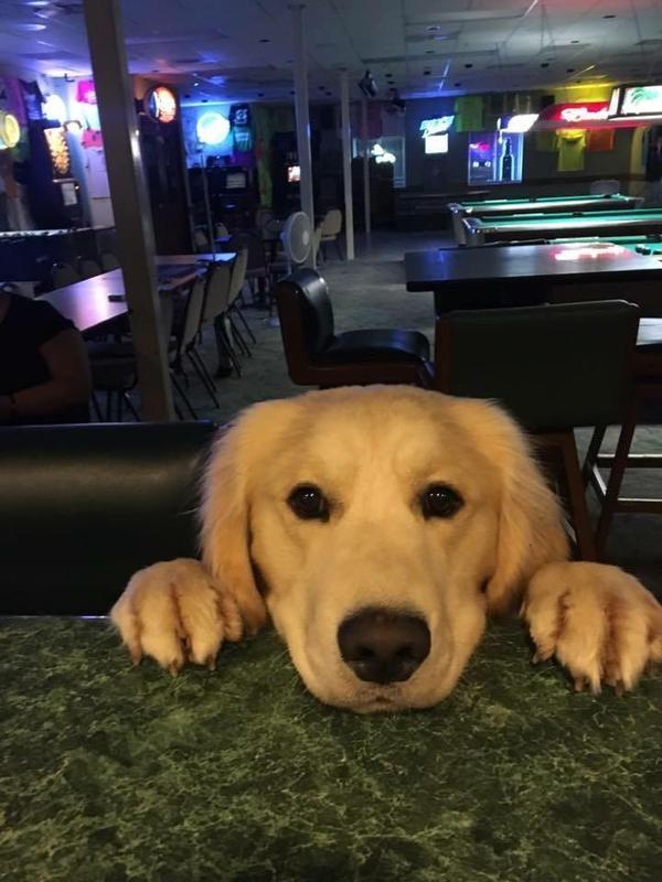 Скучающий завсегдатай в баре