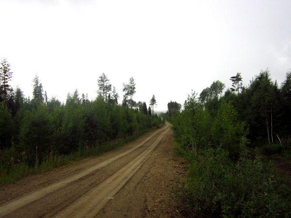 Записки картографа. Страница 3. длиннопост, Природа, лес, путешествия, природа России