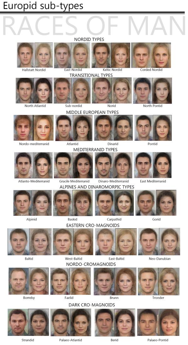 Расовые подтипы европеоидов расы, европейцы, европеоиды, люди, мужчины и женщины