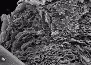 Графен и керамику объединили в легкий и прочный нанокомпозит Наука, Новости, Материал, Графен, Керамика, Нанокомпозит, Гифка