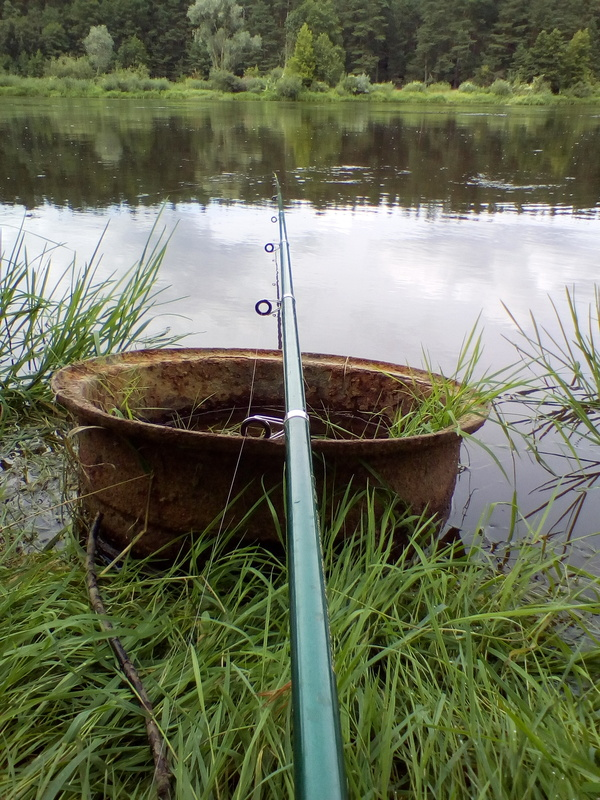 Добрый вечер, Пикабу! Река, Неман, голавль, рыбалка, длиннопост