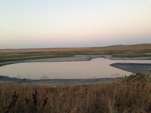 Я смотрю на озеро и радуюсь жизни Озеро, Природа, Крым