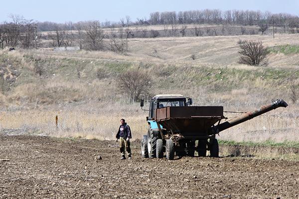 На Украине рассказали о грабящих фермеров ветеранах АТО Украина, политика, АТО, бандитизм