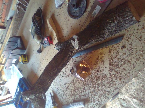 Один день лета. работа по дереву, ручная работа, абрикос, длиннопост