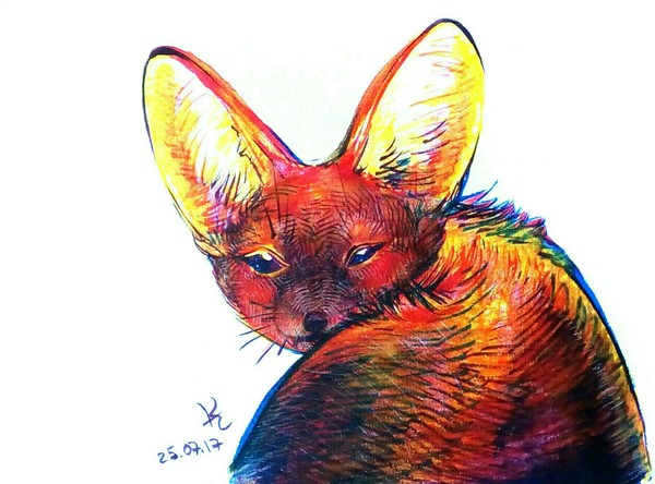 Рисунки маркером Животные, арт, маркер, Собака, Леопард, енот, аксолотль, птицы, длиннопост