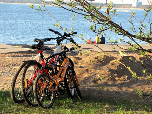 Семейство ) велосипед, семья, счастливая семья, Финский залив, парк Дубки, Сестрорецк, Санкт-Петербург, счастье