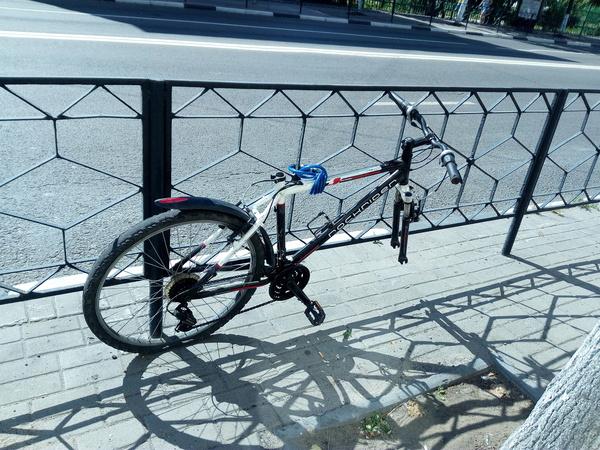 Прокатился на велике называется... велосипед, воровство, лопух