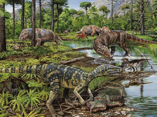 Эволюция ящериц. Жизнь в тени и невероятное разнообразие палеонтология, ящерица, змея, Эволюция, исследование, длиннопост