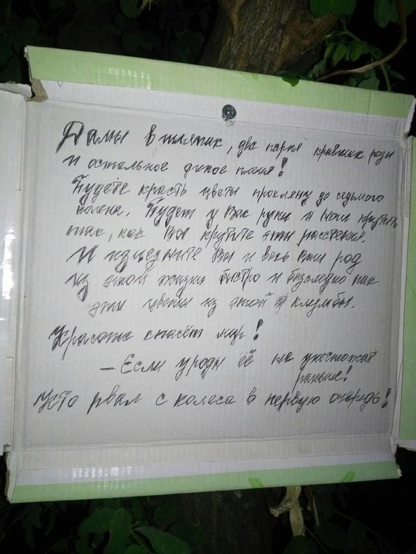 Городские ведьмы Киев, Проклятие