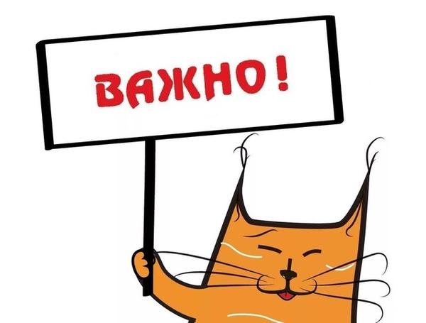"""Операция """"дятел"""" уточнение Санкт-Петербург, Москва, Лига Добра, Шкафсмолью"""