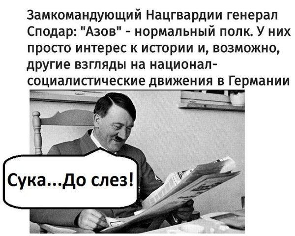 Другие взгляды. Украина, Азов, Адольф Гитлер, Политика, юмор