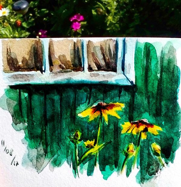 Акварельные наброски из деревни рисунок, набросок, скетч, цветы, деревня, акварель, длиннопост