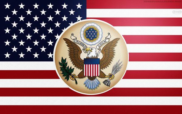 Привет, Pikabu! Я успешно прошла регистрацию и вот теперь я здесь! флаг, флаг США, Америка, Американцы, это мой первый пост