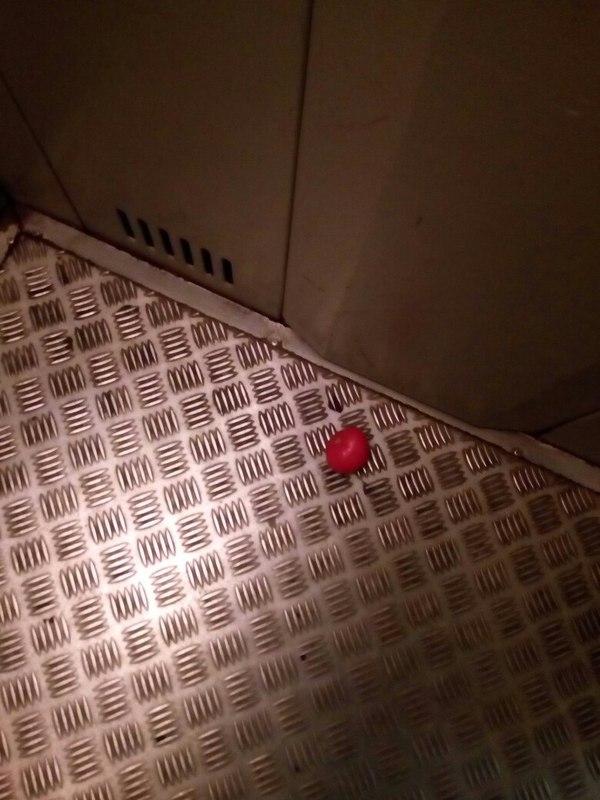 """""""Одиночество на двоих"""" моё, Короткий рассказ, рассказ, помидор, Одиночество, лифт, длиннопост"""