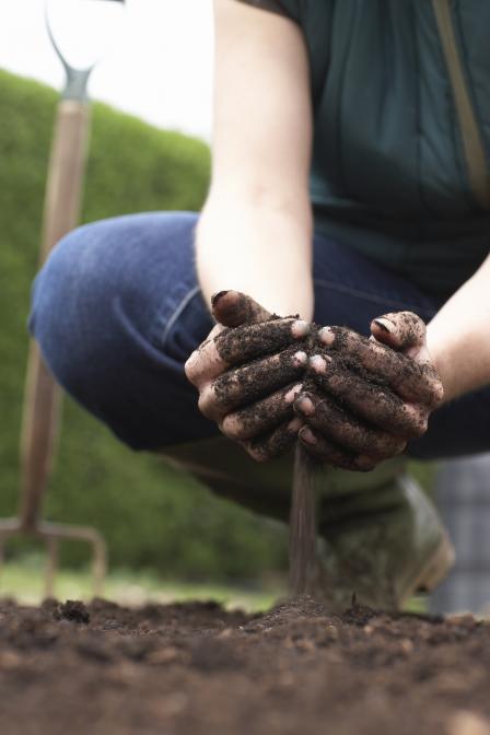 Как улучшить структуру почвы механической обработкой почва, структура почвы, улучшить почву, как улучшить структуру почвы, дачники, дача, садовод, огород, длиннопост