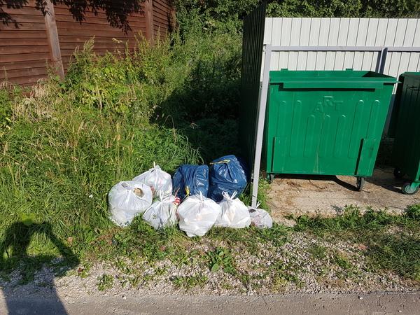 Убрали 8 пакетов мусора чистомен, экология, мусор, уборка, деревня, Чистый двор, длиннопост