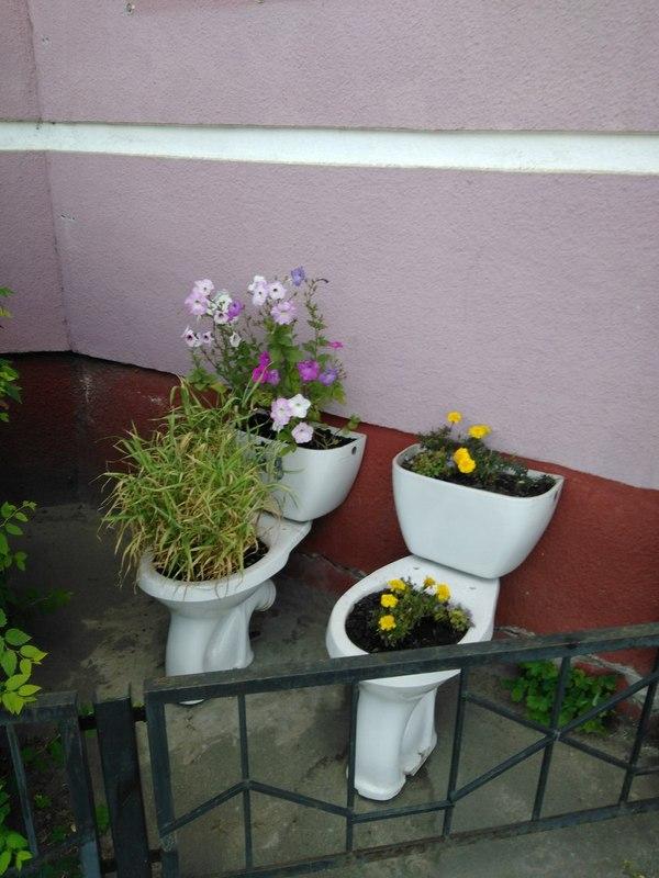 Суровые клумбы в Ярославле клумба, цветы, унитаз, handmade, Ярославль