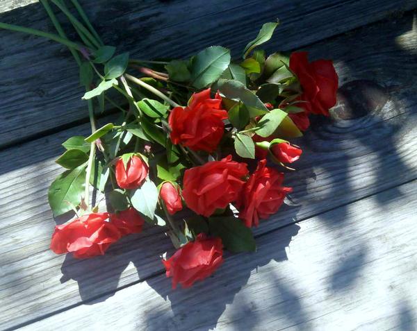 Букет красных роз ручной работы полимерная глина, рукоделие без процесса, букет роз, цветы, лепка, своими руками, длиннопост