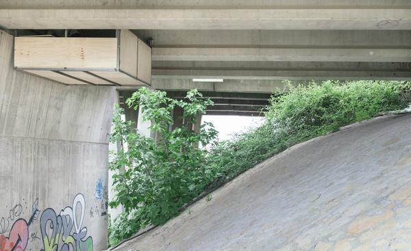Жизнь под мостом студия, мост, жилье, видео, длиннопост