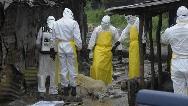 RFI: в Гвинее начались клинические испытания российской вакцины от Эболы Россия, Медицина, наука, вирусология, вирус эболы