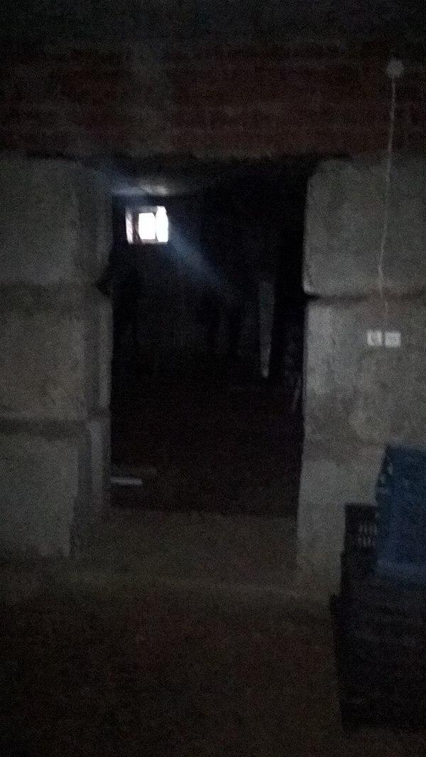 Решил спустится в подвал... тело, курьез, испуг, подвал, нежданчик, моё, в тени, дача, длиннопост