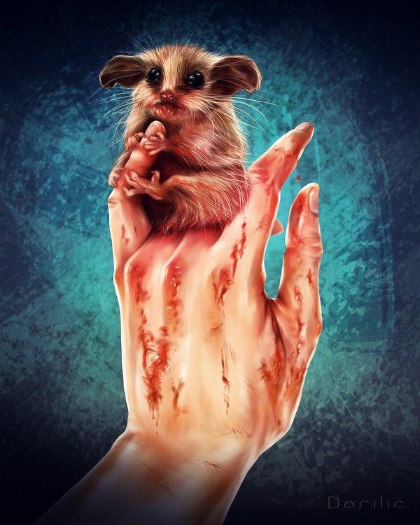 Неуравновешенный грызун арт, моё, цифровой рисунок, SAI, Photoshop, Видео, грызуны, рисунок