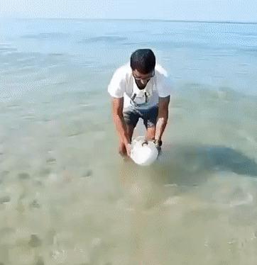 Не удивился бы, если бы рыбка гавкнула в камеру