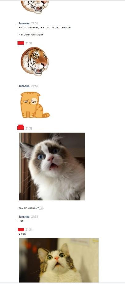 Просто разговор в вк.... переписка, ВКонтакте, кот, тигр