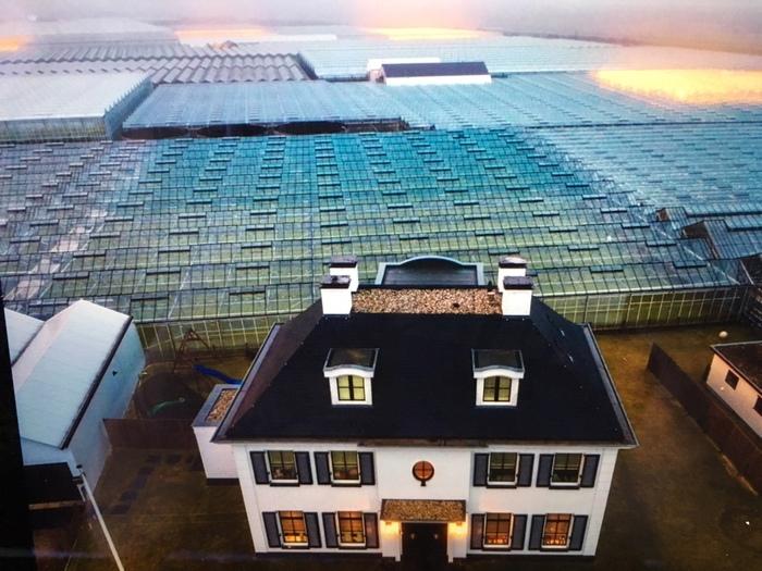 Крошечная страна, которая кормит мир Голландия, Нидерланды, Длиннопост