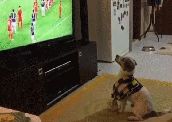 Когда смотришь с лучшим другом футбол