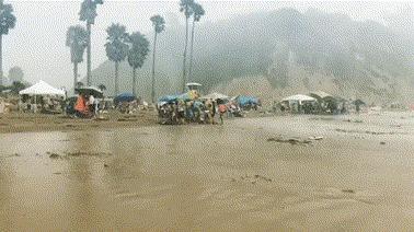 Когда выпустили погулять в дождик