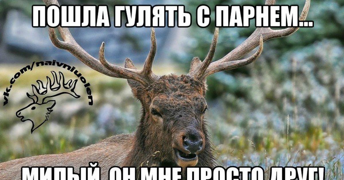 карапетян картинка оленя я не буду врать жатая