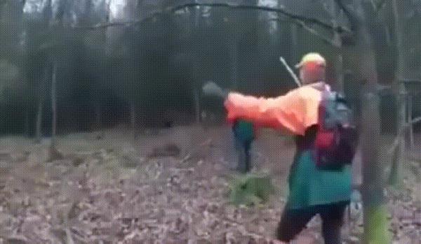 Как увернуться от дикого кабана
