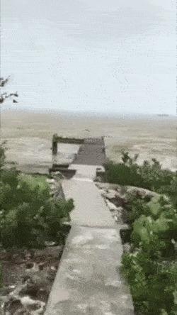 Вода просто исчезла с пляжей на Багамах перед ураганом Ирма