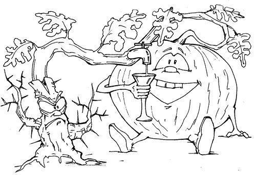 """Дыня """"привитая"""" к верблюжьей колючке. Дыня, Бахча, Туркменистан, Астрахань, Удобство"""