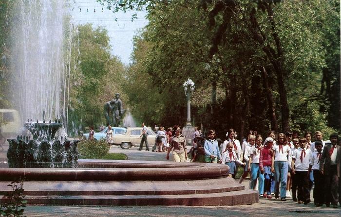 Одна из причин, почему я уехала из Волгограда... Волгоград, пойма реки царица, Мамаев курган, вырубка лесов, вырубка деревьев, длиннопост