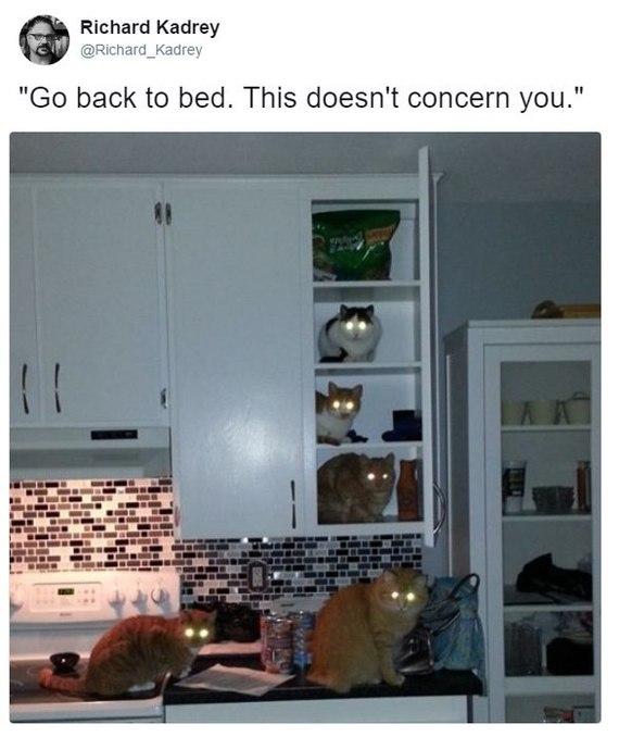 Возвращайся в кровать. Тебя это не касается.