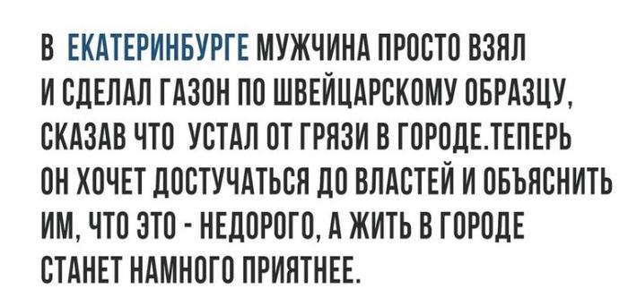 Газон в Екатеринбурге. Екатеринбург, газон, Настоящее Время