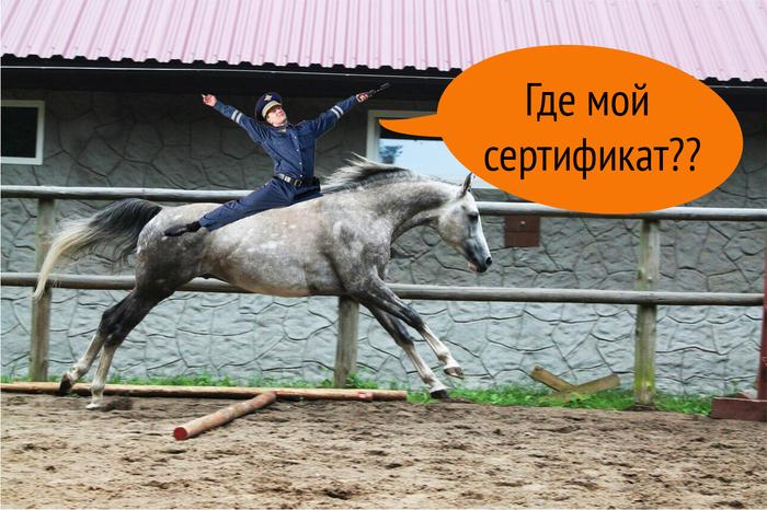 Инструкция о правах и обязанностях волонтера в конном клубе