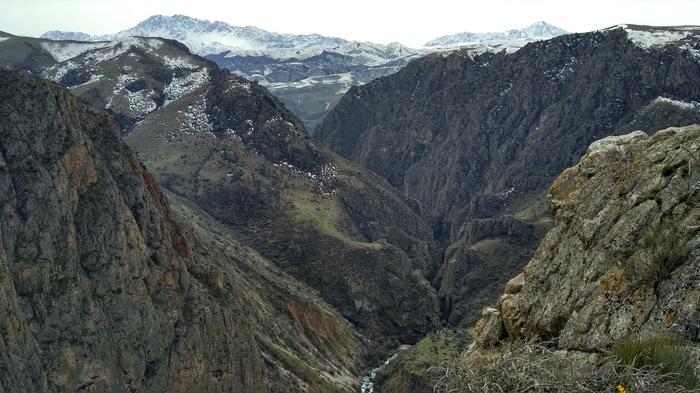 Горное ущелье. Ош, Фотография, Горы, Пейзаж, Природа, Ущелье, Цветок, Длиннопост