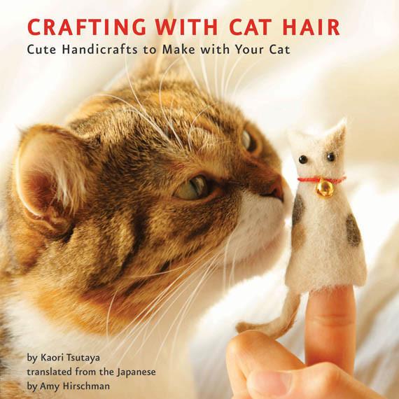 cat twitter header