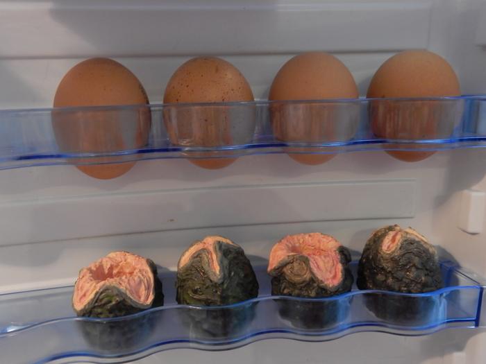 Кладка ксеноморфов в холодильнике Туториал, Чужой, ксеноморф, творчество, длиннопост
