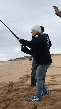 Отдайте мне мою рыбу Не мое, Reddit, Морской котик, Рыба, Гифка