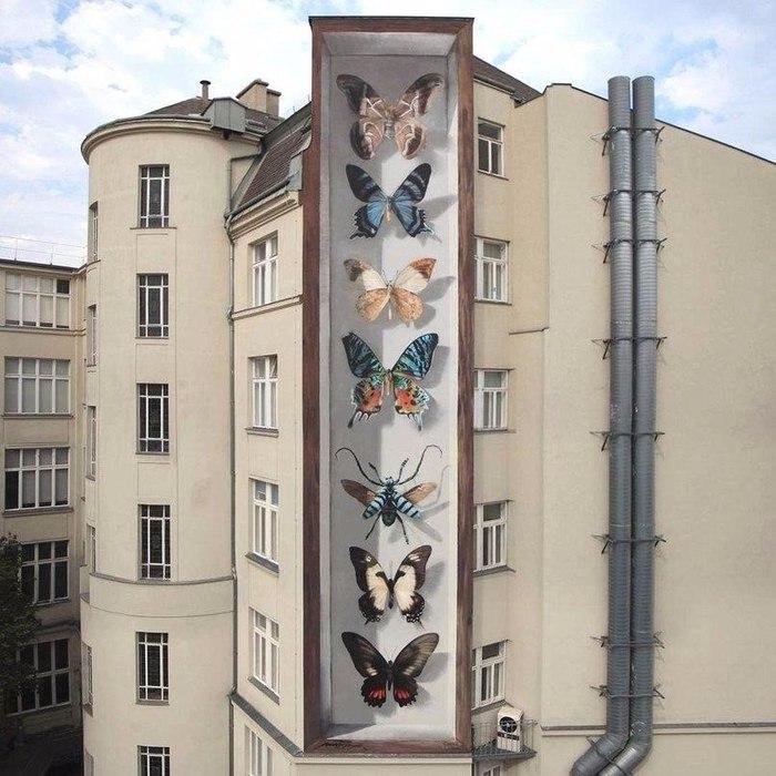 Уличный художник Mantra