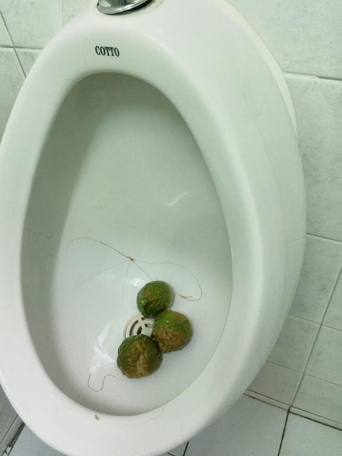 Тайский освежитель Таиланд, Туалет